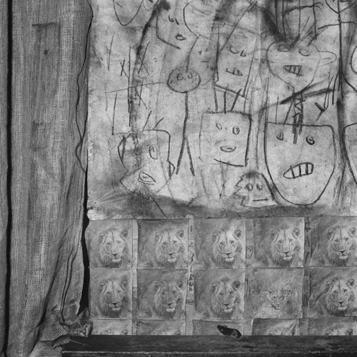 Cat and mouse, 2006 by Roger Ballen