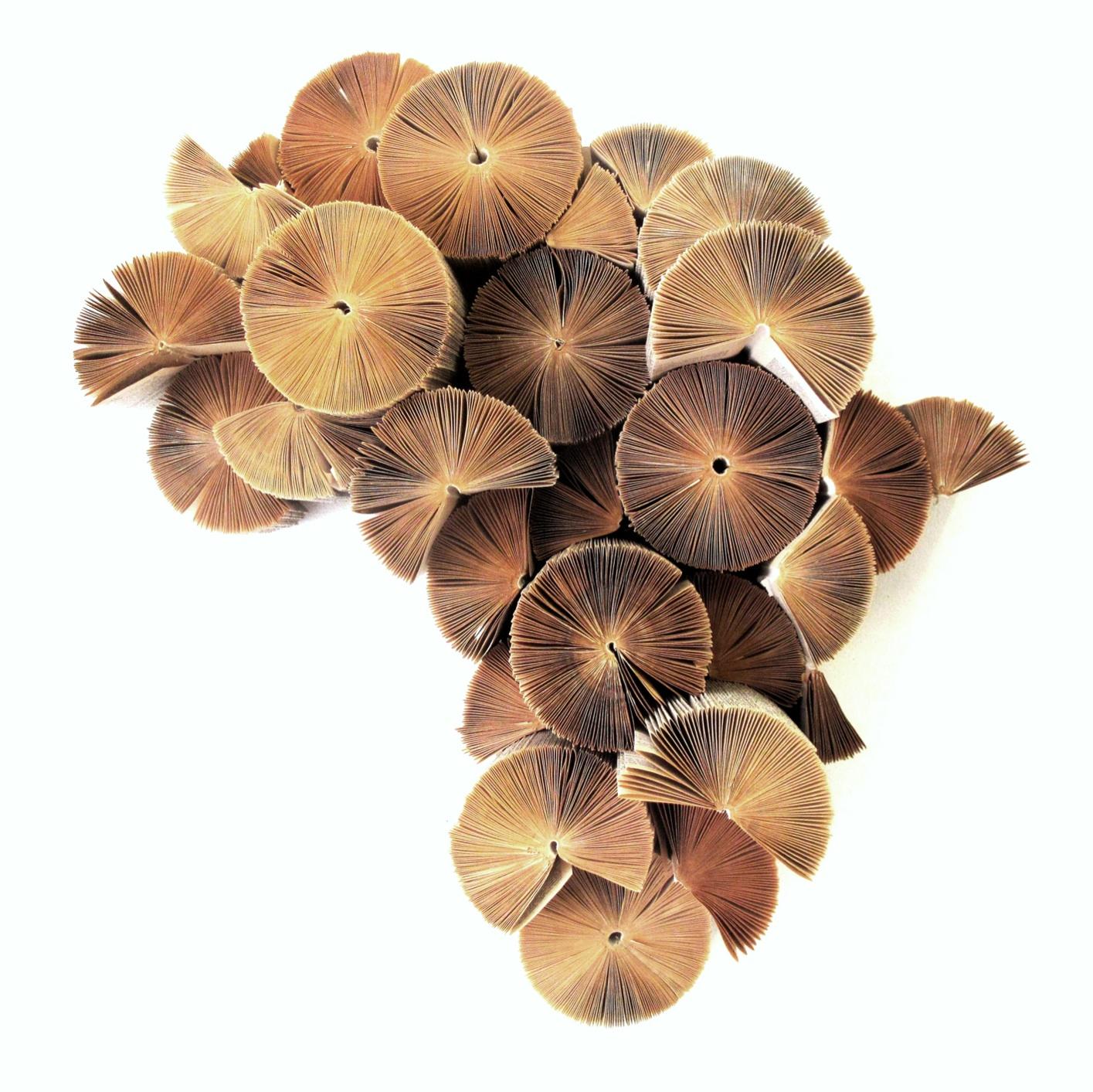 Africa Reinvented