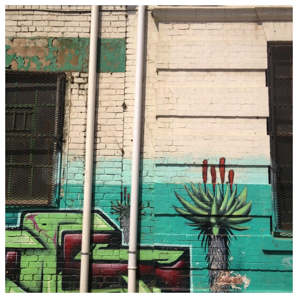 Aloe city